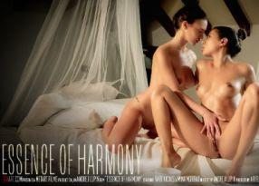 Essence Of Harmony